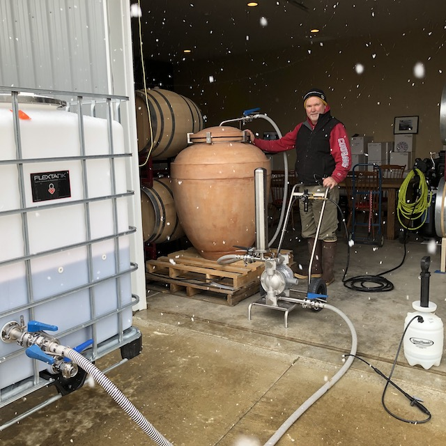 Filling amphora with Primitivo